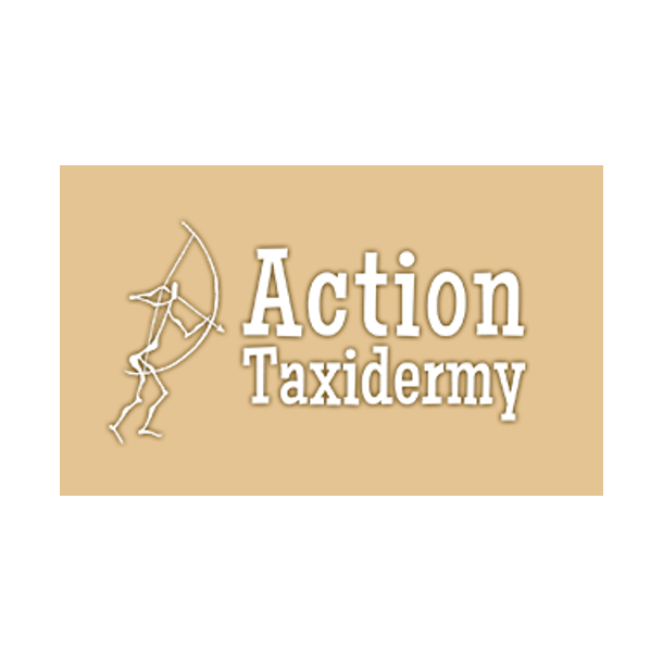 Action Taxidermy